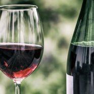 Sur la route, découvrez les meilleurs vins de Provence