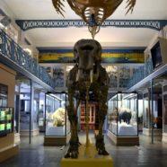 Le top 3 des musées dédiés aux enfants à Paris