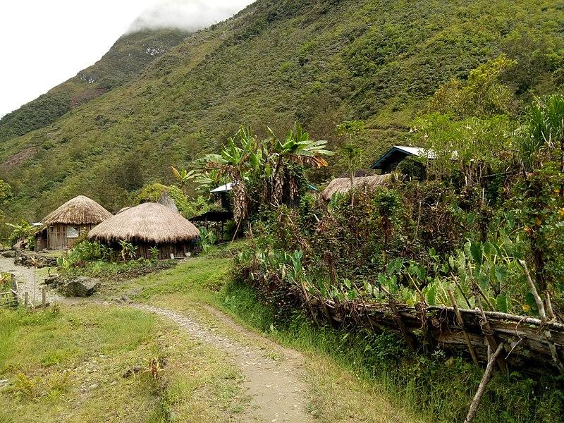 Voyager en Papouasie