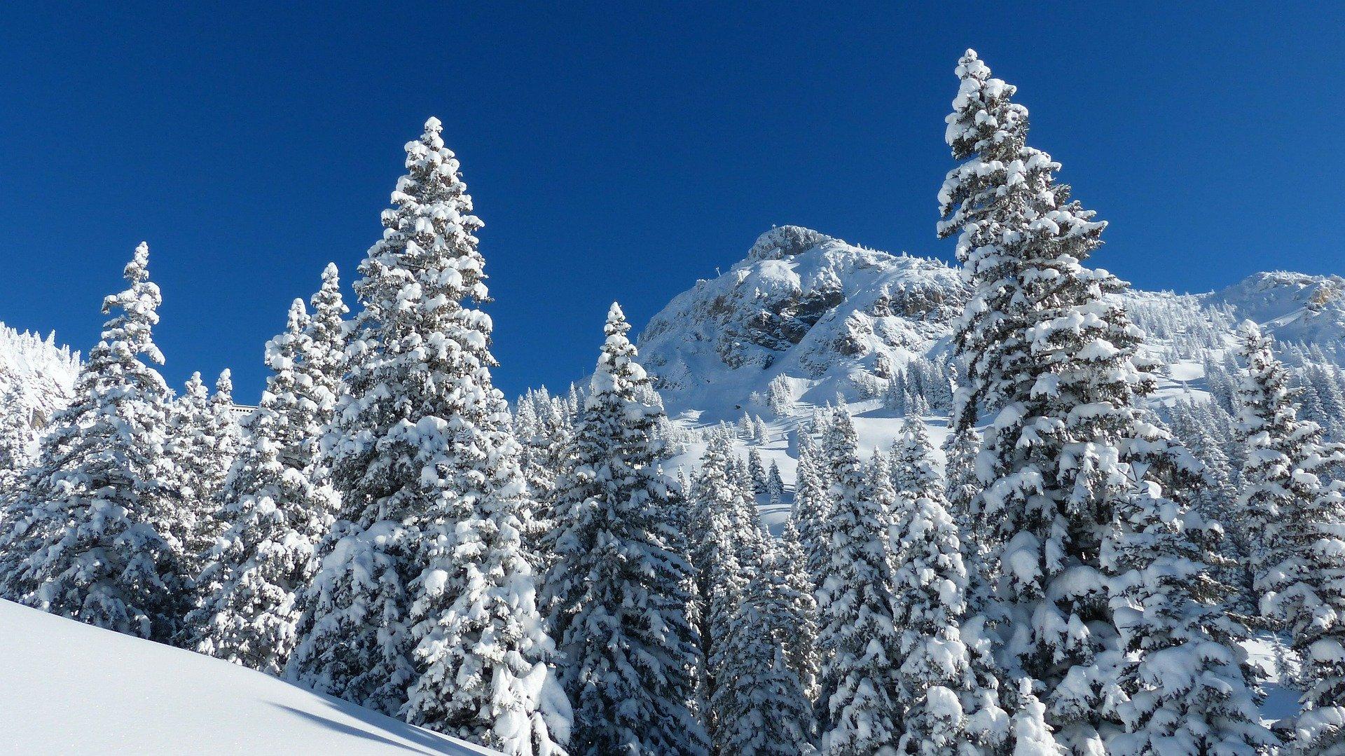 Destination montagne cet hiver